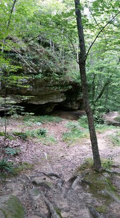 Goreville, IL: Ferne Clyffe waterfall hike. Moderate trail, waterfall hike