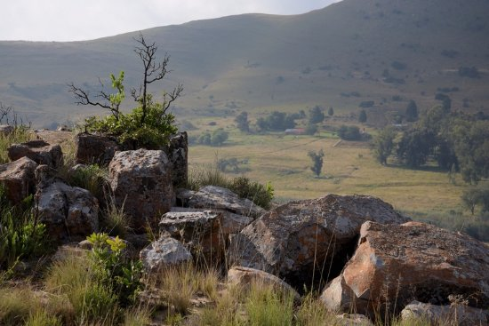 Lydenburg, South Africa: Nice walking trail up the mountain