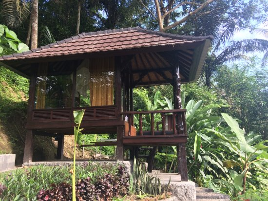 Bali jungle huts updated 2018 prices campground for Unusual accommodation bali