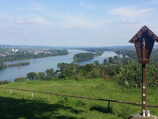 Bingen am Rhein, Germany: 20170822_152641_large.jpg