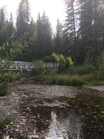 เฟอร์นีย์, แคนาดา: Mount Fernie Provincial Park