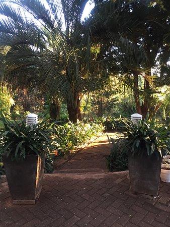 Louis Trichardt, South Africa: photo1.jpg