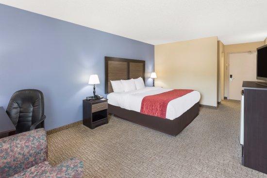 Vidalia, GA: Spacious king room