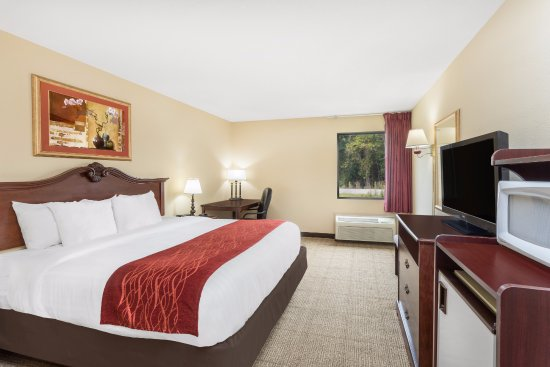 ADA King room with work space, flat screen TV, Microwave and ...
