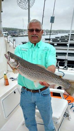 Bay Harbor, MI: Brown Trout
