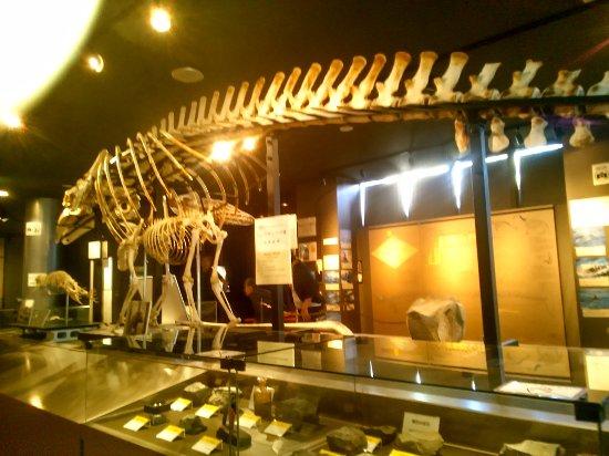 Hobetsu Museum