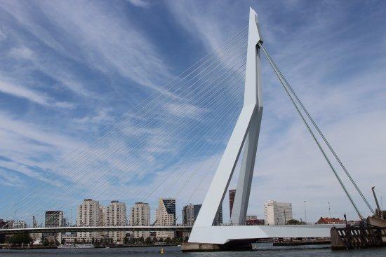 Erasmus Bridge: pont