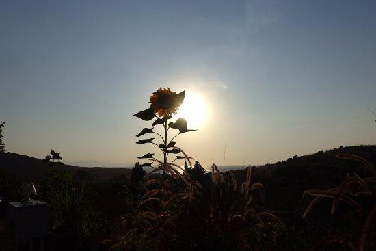 Limon Gümüşlük: Güneşin batışı