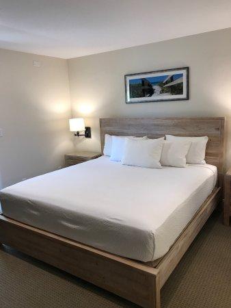 Legacy Vacation Resorts-Indian Shores: photo2.jpg