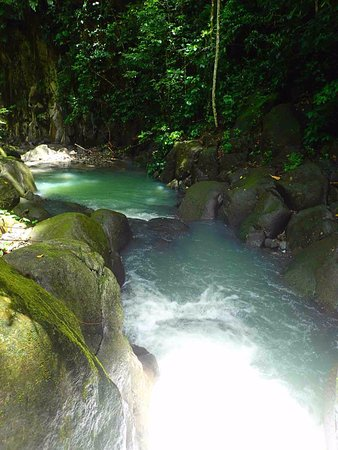 Bouillante, Guadeloupe: la meilleure façon de découvrir la forêt tropicale!