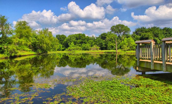 Colleyville, TX: A shot of Mill Pond from an early visit show the beauty and tranquility of this beautiful park.