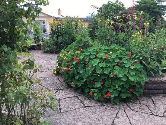 Bergius Botanic Garden: photo4.jpg