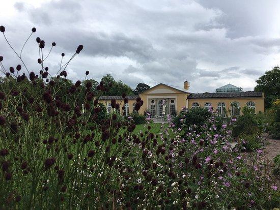 Bergius Botanic Garden: photo5.jpg