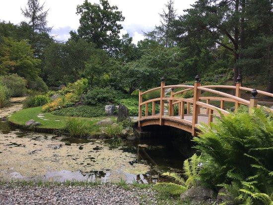 Bergius Botanic Garden: photo6.jpg