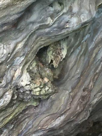 Escursioni La Torre: Grotta del drago