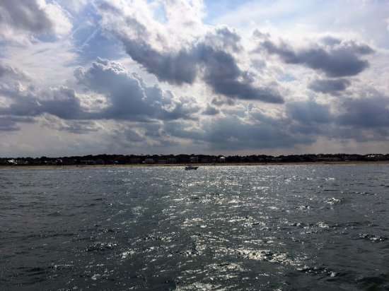 Virginia Aquarium & Marine Science Center: View of beach on dolphin cruise