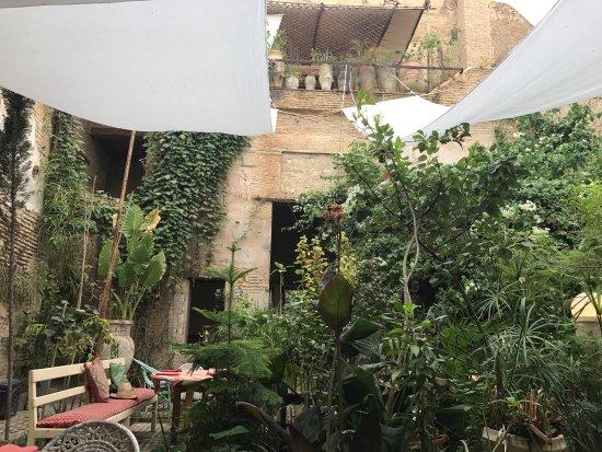 The Ruined Garden Photo