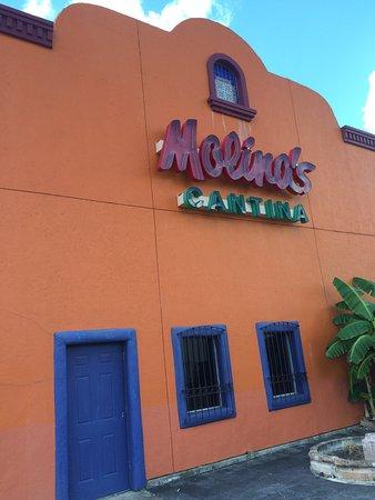 Molina's Cantina Photo