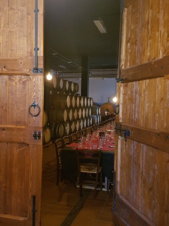 Palagetto Winery: L'ingresso...