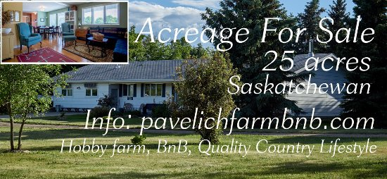 Pavelich Farm Bed and Breakfast : Pavelich Farm BnB - Acreage for Sale