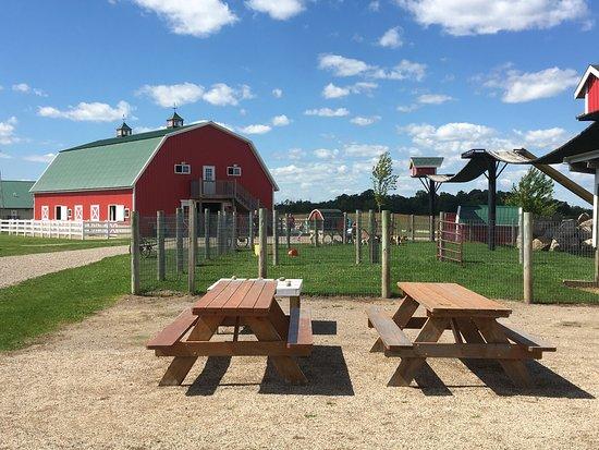 A Maze'n Farmyard: Fun for ALL