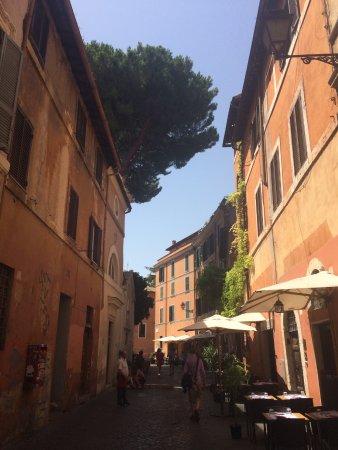 Tonnarello: just left the Piazza Santa Maria entering via della paglia, the tree of the church