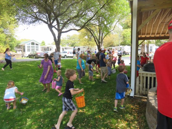 Holiday Trav-L-Park Resort: All of our little campers hunting for all those eggs around the stage area of our campground.