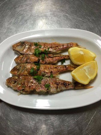 Captain's House: red mullet