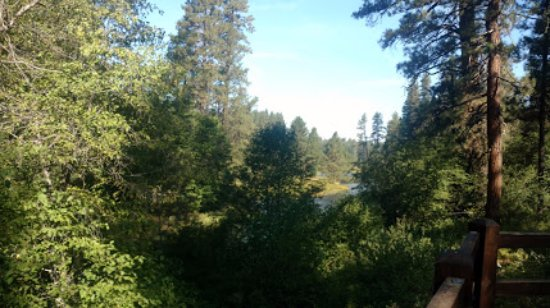 Camp Sherman, OR: Head of the Metolius