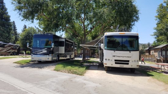 Flying Flags RV Resort & Campground: Pull thru RV spaces