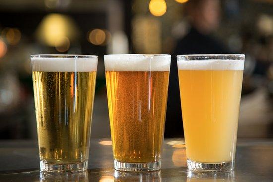 Pita Jungle: Beer