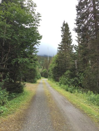Gaspesie Region, Canada: Looking at the misty mountains from the campsite