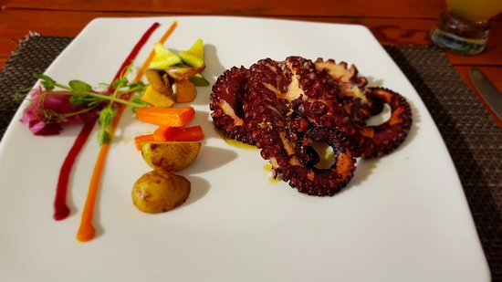 Cafe de Playa: Octopus
