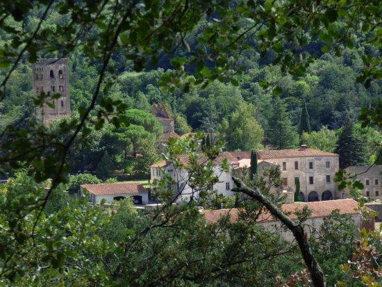 Saint-Michel-de-Cuxa: vue des sous bois autour de st michel