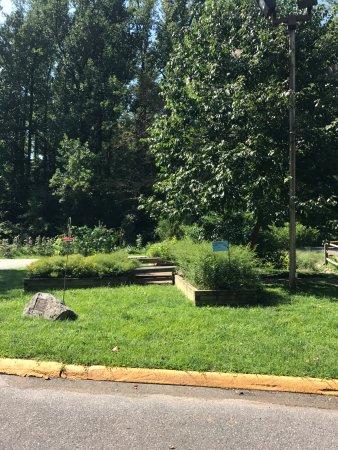Brookside Nature Center: Birds and bees garden