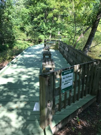Brookside Nature Center: Walk path to see marshland plants and animal
