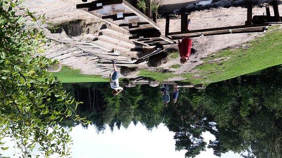Speelweide en dieren in park Berg en Bos!