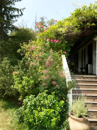 Pelindaba Lavender Farm: Stairs to the Gift Shop