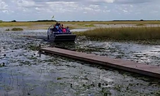 Tigertail Airboat Tours: Arriving at a private island.