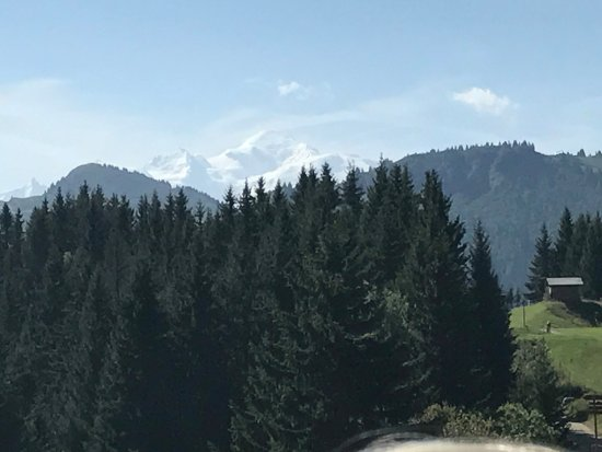 Hotel L'Hermine Blanche: Mont Blanc from the top of Le Pleney cable car