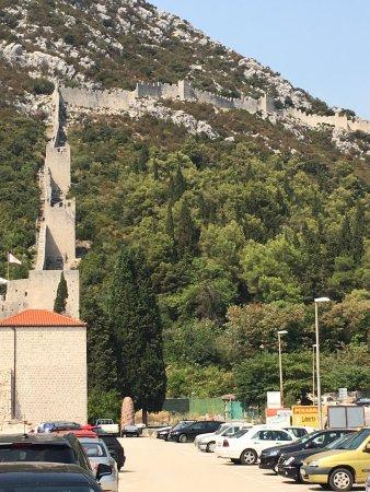 Ston, Croacia: photo1.jpg