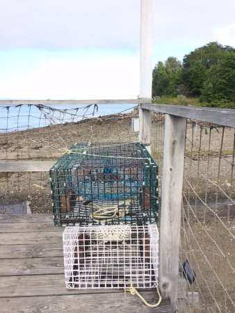 Chart Room: Sipping a cocktail and walking around looking at lobster traps.