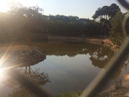 Pululukwa Resort: Lago