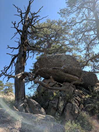 Curt Gowdy State Park: Hike to Hidden Falls