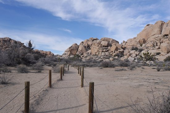 29 Palms Inn: Hiking trail entrance, Joshua Tree National Park