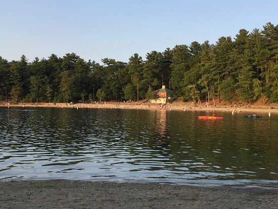 Concord, MA : Walden Pond facing north, mid August 2017