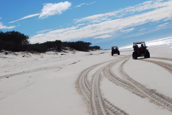 Gold Coast Island Buggy Tours: Get to drive along the beautiful beaches