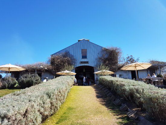 Mudgee, Austrália: On the way up to the cellar door