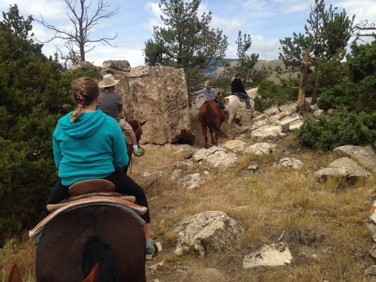 Cedar Mountain Trail Rides: Bob, thank you for these smiles! You truly have a wonderful set up.