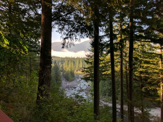 The Roaring River Bed & Breakfast: Amazing view from the Rock and Rose Room